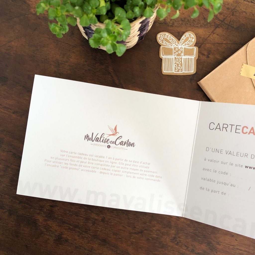 carte-cadeau-ma-valise-en-carton-02